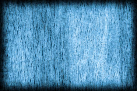 beech wood: Old Beech Wood Bleached and Marine Blue Stained, Vignette Grunge Texture Sample.