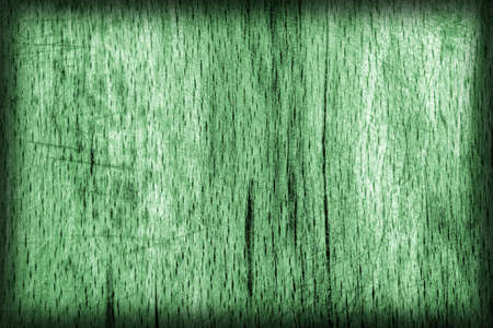 beech wood: Old Beech Wood, Bleached and Stained Pale Green, Vignette, Grunge Texture Sample. Stock Photo