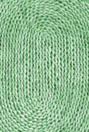 plaited: Raffia Place Mat Plaited Detail, Bleached and Stained Pale Green, Grunge Texture Sample.