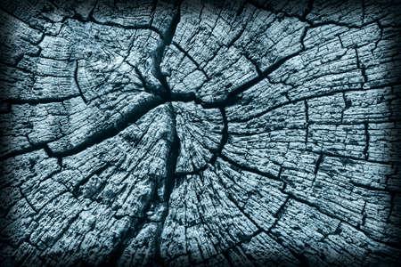 dilapidation: Old Stump, Weathered, Rotten, Cracked, Top Surface, Dark Pale Blue, Vignette, Grunge Texture.