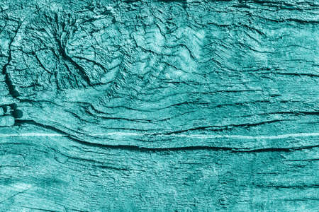 knotting: Old Wood, Weathered, Rotten, Cracked, Pale Cyan, Grunge Texture. Stock Photo