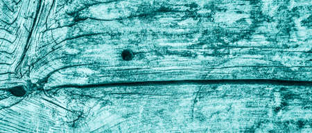 dilapidation: Old Wood, Weathered, Rotten, Cracked, Pale Cyan, Vignette, Grunge Texture. Stock Photo