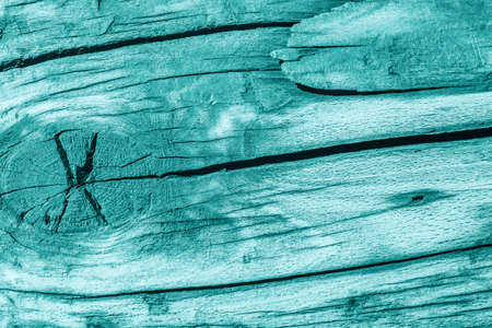 nature symbols metaphors: Old Wood, Weathered, Rotten, Cracked, Pale Cyan, Grunge Texture. Stock Photo