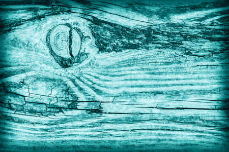 nature symbols metaphors: Old Wood, Weathered, Rotten, Cracked, Pale Cyan, Vignette, Grunge Texture. Stock Photo