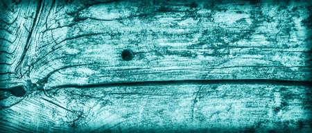 nature symbols metaphors: Old Wood, Weathered, Rotten, Cracked, Dark Pale Cyan, Vignette, Grunge Texture.