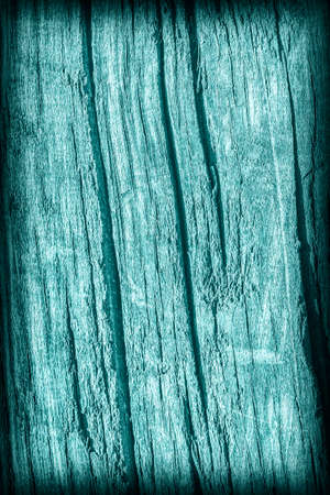 nature symbols metaphors: Old Wood, Weathered, Rotten, Cracked, Stained Dark Pale Cyan, Vignette, Grunge Texture.