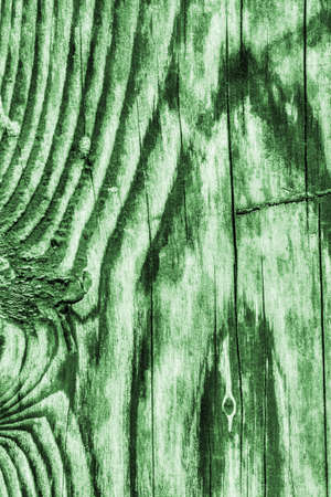 kelly: Old Wood Green Grunge Texture. Stock Photo