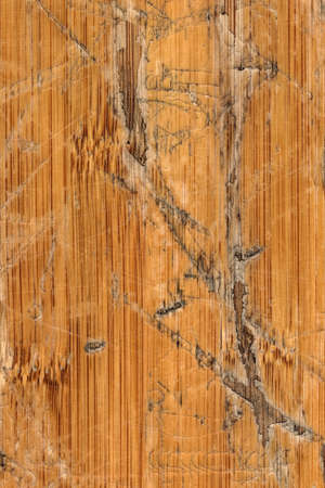 aging process: Block-board, Wood, Wood Panel, Floorboard, Old, Cracked, Laminated, Glued Splines, Scratched, Peeled Off, Damaged, Aging Process, Weathered, Rotten, Obsolete, Paneling, Tongue and Groove, Varnished, Lacquered, Cracked Lacquer, Flooring, Rough Surface, Coa