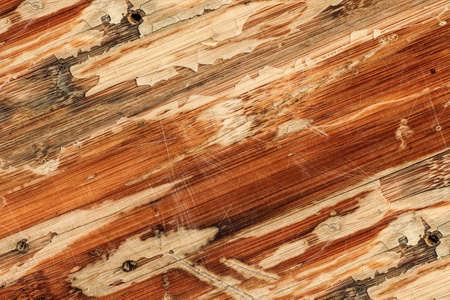 varnished: Old Weathered Varnished Blockboard Cracked Scratched Peeled Off Grunge Texture
