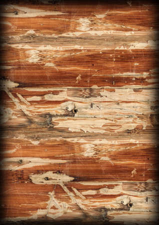 tongue and groove: Old Varnished Wooden Panel Cracked Scratched Peeled Vignette Grunge Texture