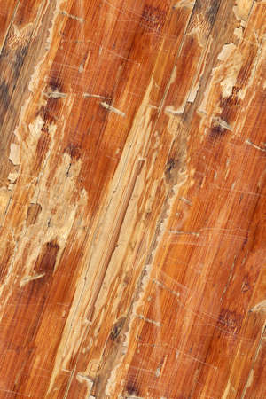 tongue and groove: Old Laminated Flooring Varnished Wood Block-board, Cracked Scratched Peeled Grunge Texture.