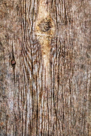 dilapidation: Old Weathered Rotten Cracked Knotted Wood Rough Grunge Texture