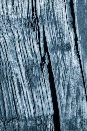 dilapidation: Old Knotted Wood Weathered Rotten Cracked Bleached And Stained Powder Blue Grunge Texture Stock Photo