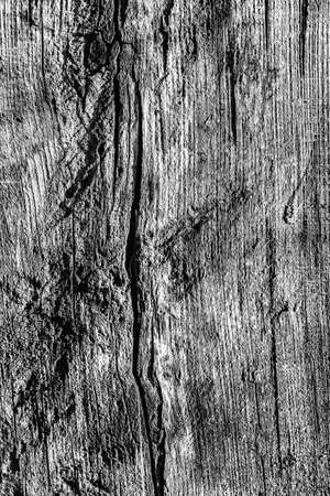 dilapidation: Old Knotted Wood Weathered Rotten Cracked Bleached And Stained Gray Grunge Texture