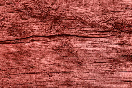 decomposition: Old Knotted Wood Weathered Rotten Cracked Bleached And Stained Maroon Red Grunge Texture