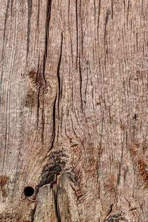 drilled: Old Weathered Rotten Cracked Wooden Railroad Tie Rustic Coarse Grunge Texture
