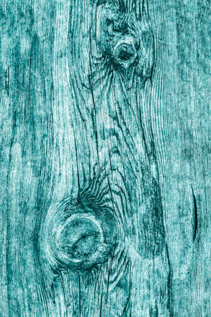 floorboard: Old Knotted Weathered Rotten Cracked Wooden Rustic Floorboard Coarse Monochrome Cyan Grunge Texture
