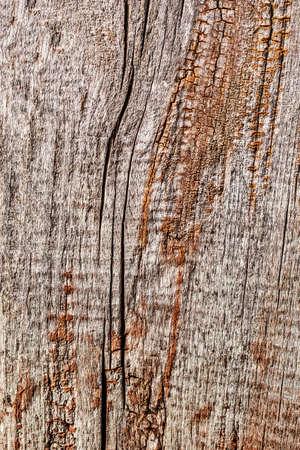 floorboard: Old Weathered Rotten Cracked Wooden Rustic Floorboard Coarse Grunge Texture