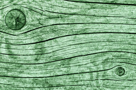 dilapidation: Old Knotted Weathered Rotten Cracked Wooden Rustic Floorboard Coarse Kelly Green Grunge Texture