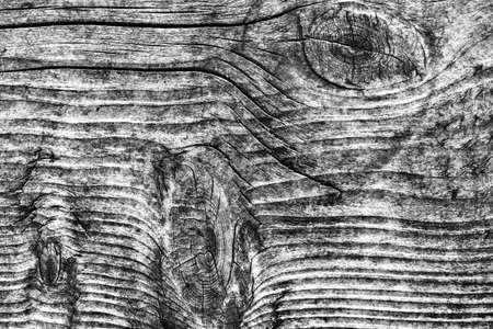 floorboard: Old Knotted Weathered Rotten Cracked Wooden Rustic Floorboard Coarse Gray Grunge Texture Stock Photo