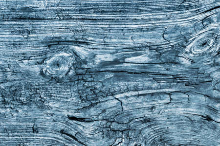 floorboard: Old Knotted Weathered Rotten Cracked Wooden Rustic Floorboard Coarse Blue Grunge Texture