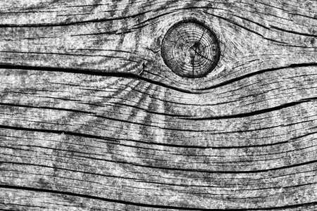 Old Weathered Rotten Cracked Knotted Coarse Wood Gray Grunge Texture Stock Photo