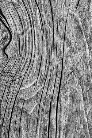 dilapidation: Old Weathered Rotten Cracked Knotted Coarse Wood Gray Grunge Texture Stock Photo