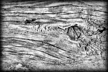 vignetted: Old Weathered Rotten Cracked Knotted Coarse Wood Gray Vignetted Grunge Texture Stock Photo