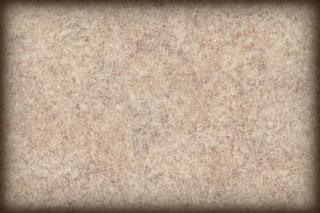 mottled skin: Antique Beige Animal Skin Parchment Wizened Coarse Vignetted Grunge Texture Stock Photo