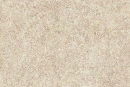 mottled skin: Antique Beige Animal Skin Parchment Coarse Wizened Grunge Texture