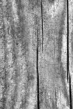 Old Weathered Knotted Cracked Gray Pine Floorboard Texture Detail