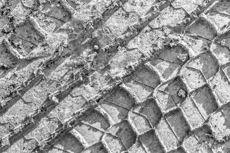 traction: Tire Track Print In Gray Muddy Dirt