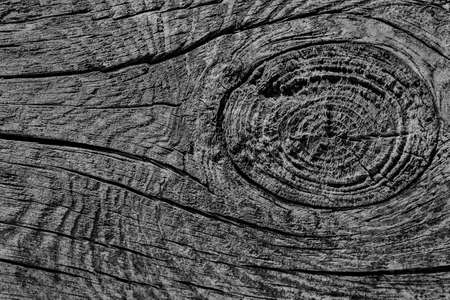dilapidation: Old Weathered Cracked Rotten Stump Top Surface Black Grunge Texture Stock Photo