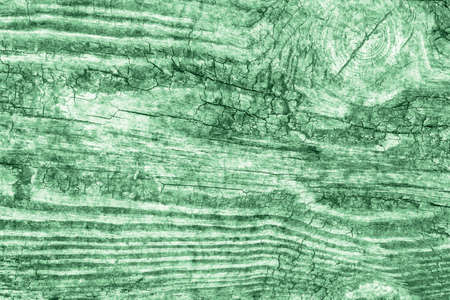 Old Wood Green Grunge Texture Stock Photo