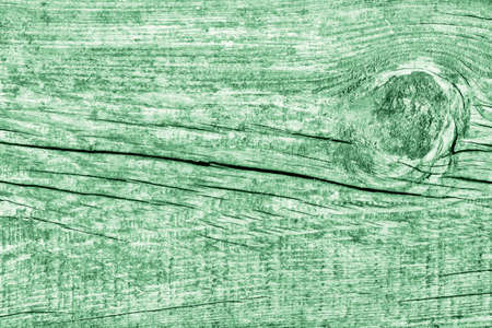 Old Knotted Wood Green Grunge Texture