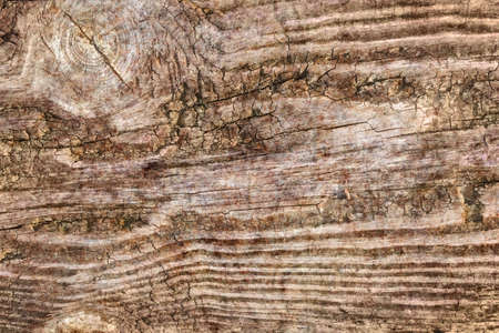 Old Knotted Wood Grunge Background Texture Stock Photo