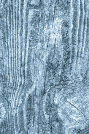 Old Knotted Wood Blue Grunge Background Texture