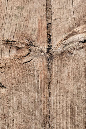 Old Weathered Cracked Knotted Pinewood Grunge Texture
