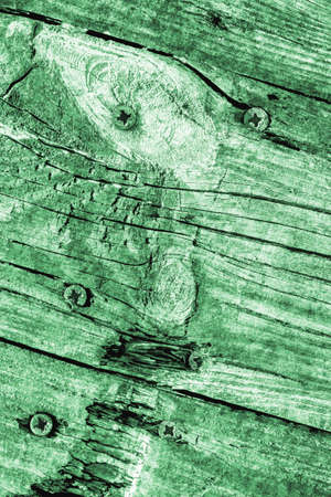 kelly: Old Knotted Green Pine Wood Board Grunge Texture Detail
