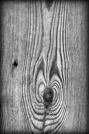 floorboards: Old Knotted Gray Pine Wood Board Vignetted Grunge Texture Detail