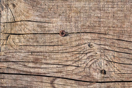 Old Weathered Cracked Knotted Pine Wood Floorboards Grunge Texture