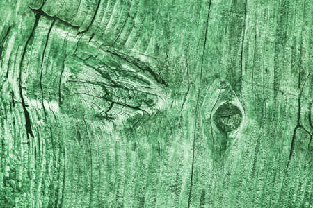 Old Weathered Cracked Knotted Kelly Green Pine Wood Floorboards Grunge Texture