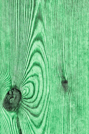 floorboards: Old Knotted Green Pine Wood Board Grunge Texture Detail