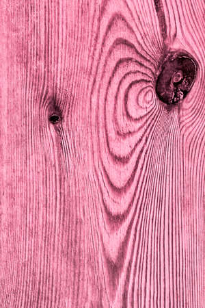 Old Knotted Magenta Pine Wood Board Grunge Texture Detail