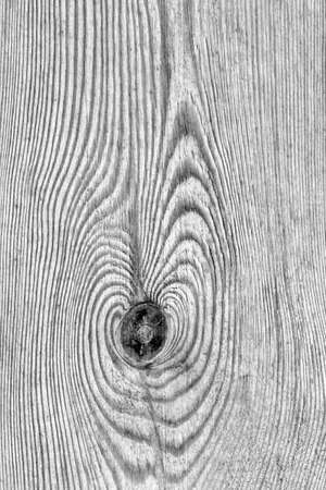 Old Knotted Gray Pine Wood Board Grunge Texture Detail