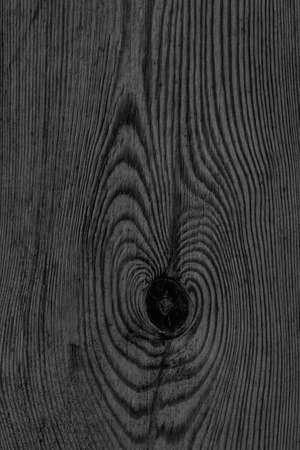 floorboards: Old Knotted Black Pine Wood Board Grunge Texture Detail