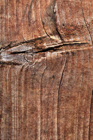 Old Weathered Rotten Cracked Knotted Coarse Pine Wood Grunge Texture