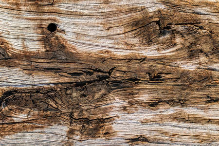 Old Weathered Rotten Cracked Knotted Pine Wood Railway Sleeper Grunge Texture