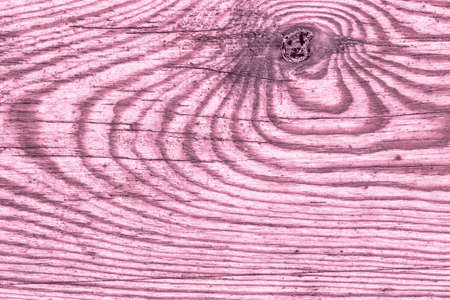 Old Weathered Rotten Knotted Stained Magenta And Varnished Pinewood Planks Cracked Flaky Grunge Texture Detail 写真素材