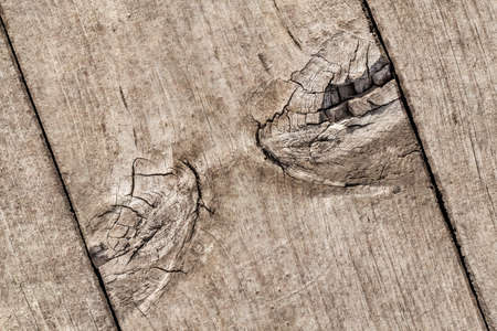 Old Weathered Cracked Knotted Pine Wood Floorboard Grunge Texture Detail